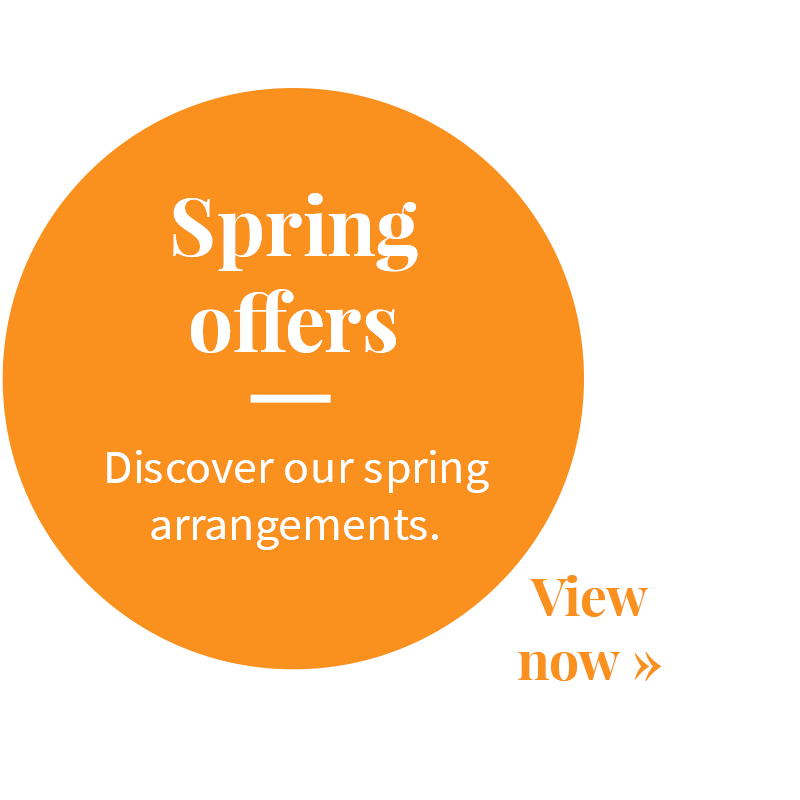 Discover spring offers – Hotel North Sea